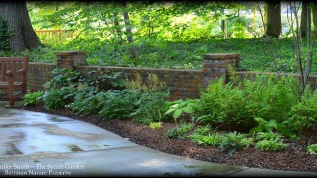 The Secret Garden Bettman Nature PreserveA
