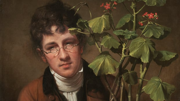 Rembrandt Peale (American, 1778 - 1860 ), Rubens Peale with a Geranium, 1801, oil on canvas, Patrons' Permanent Fund