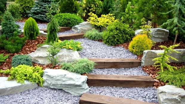 Landscape designers think about the long-term vision, so give yourself 3-to-5 years for