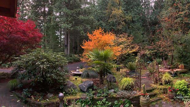 fall.garden