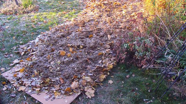 sheetcompost