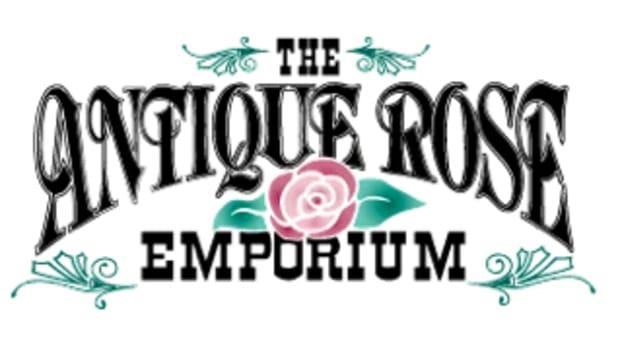antique-rose-emporium
