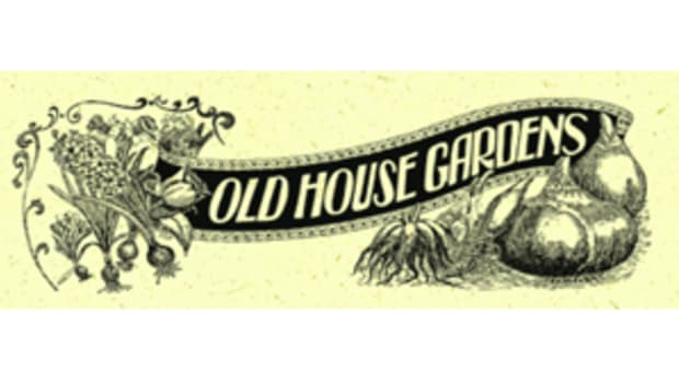 old-house-gardens