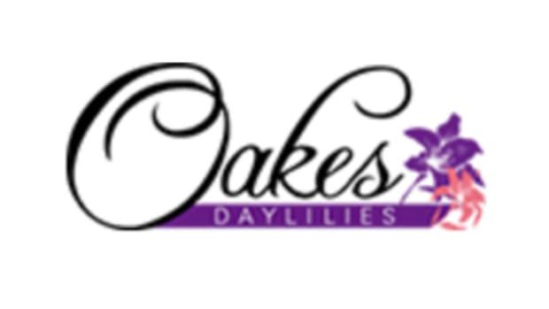 oakes-daylilies