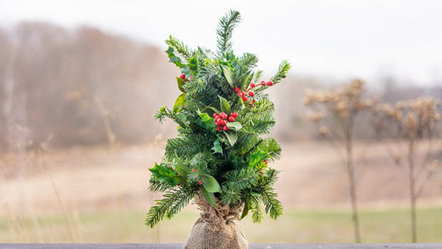 ChristmasTreeTiny