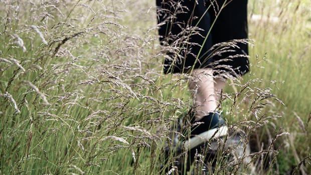 anklegrass