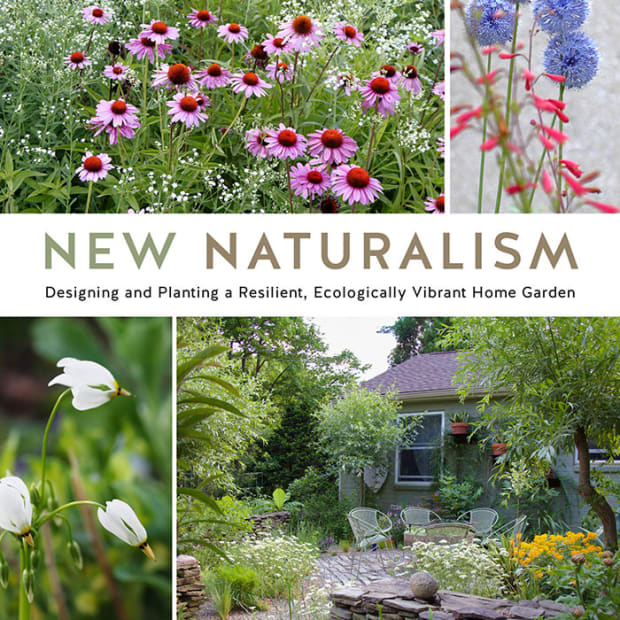 NewNaturalismcover