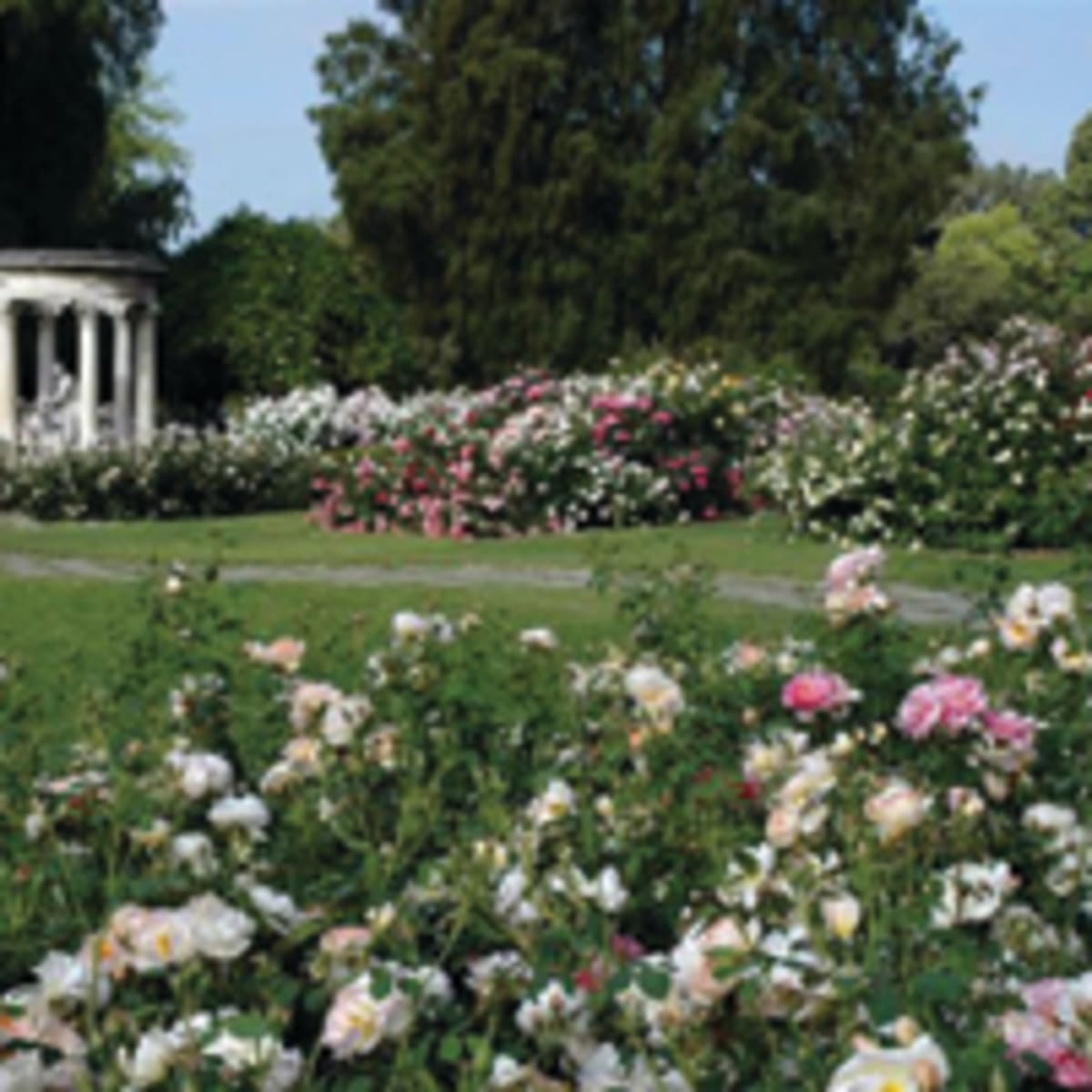 The Huntington Library Art Collections And Botanical Gardens Horticulture
