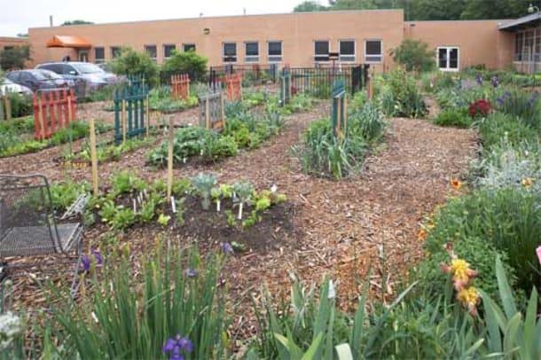 Granny's Garden School