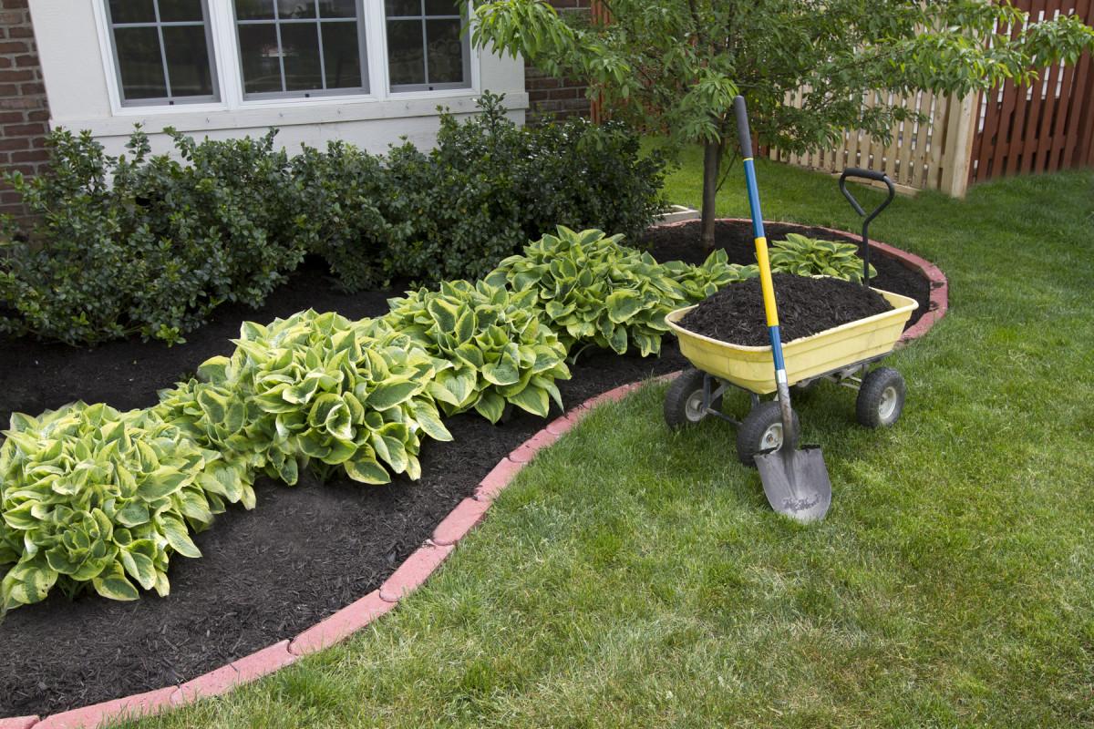 planning spring garden Horticulture