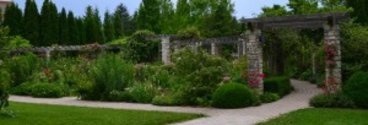 Approaching the Arbor Garden