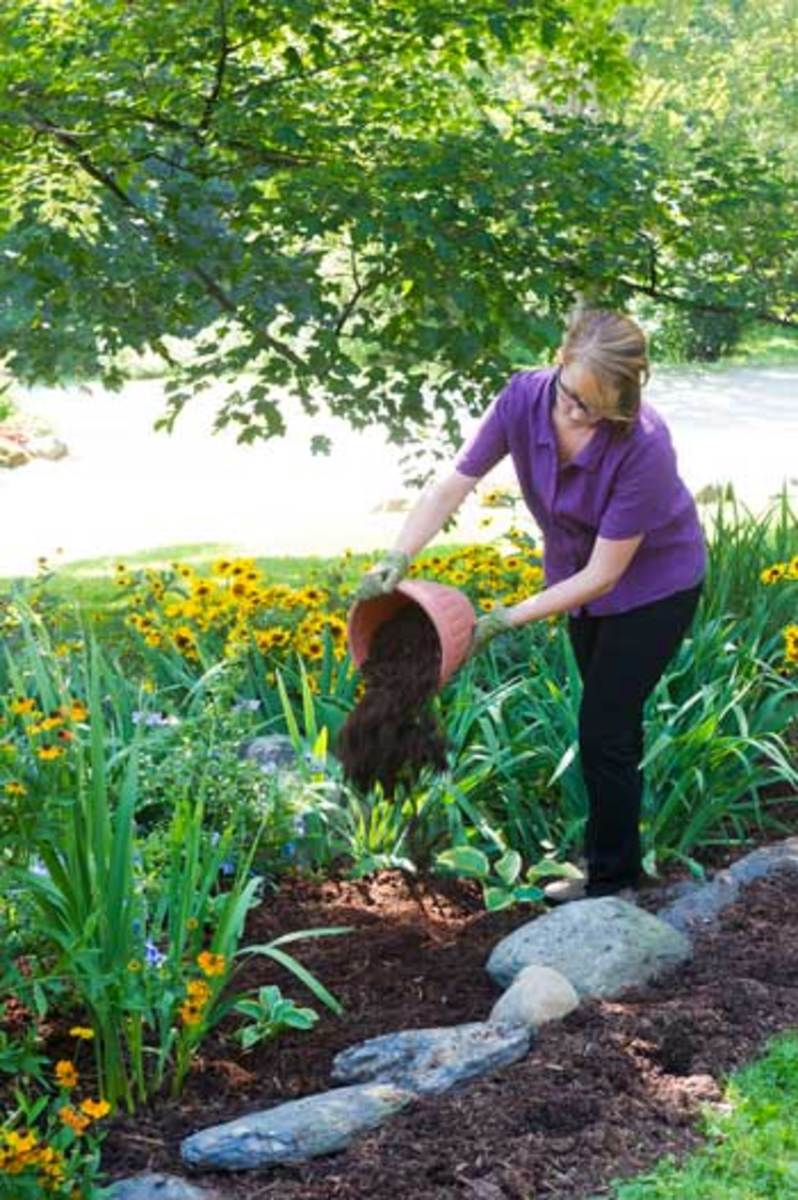 Prevent weed growth by placing mulch over exposed ground
