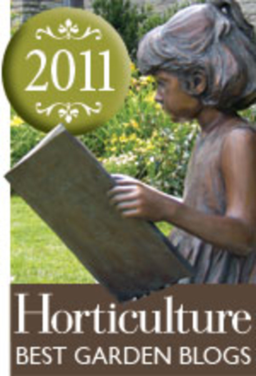 Hortmagazine Best Garden Blog award