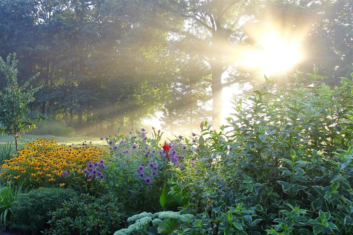 1.GloriousGarden Horticulture Photo Contest