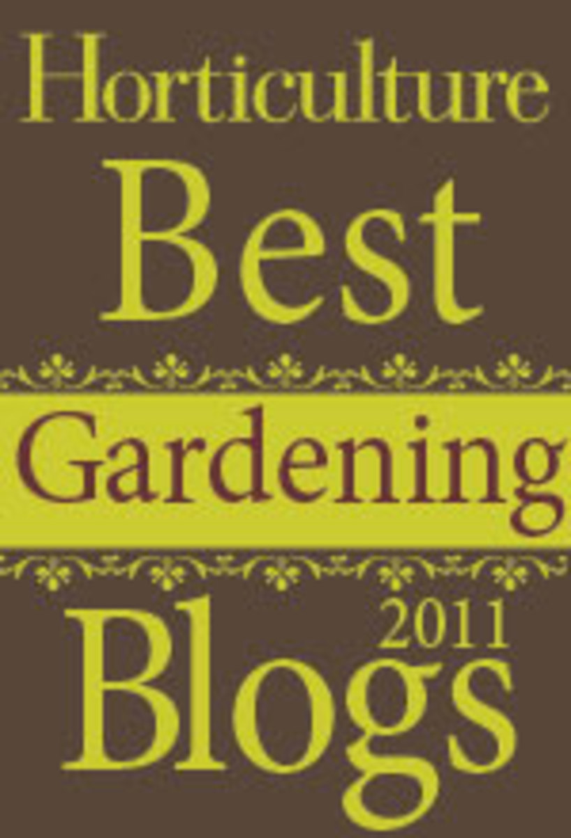 BestGdnBlog_Badge2