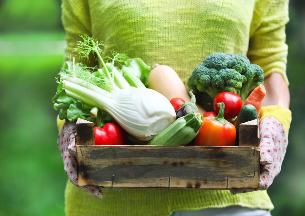 planning your spring vegetable garden