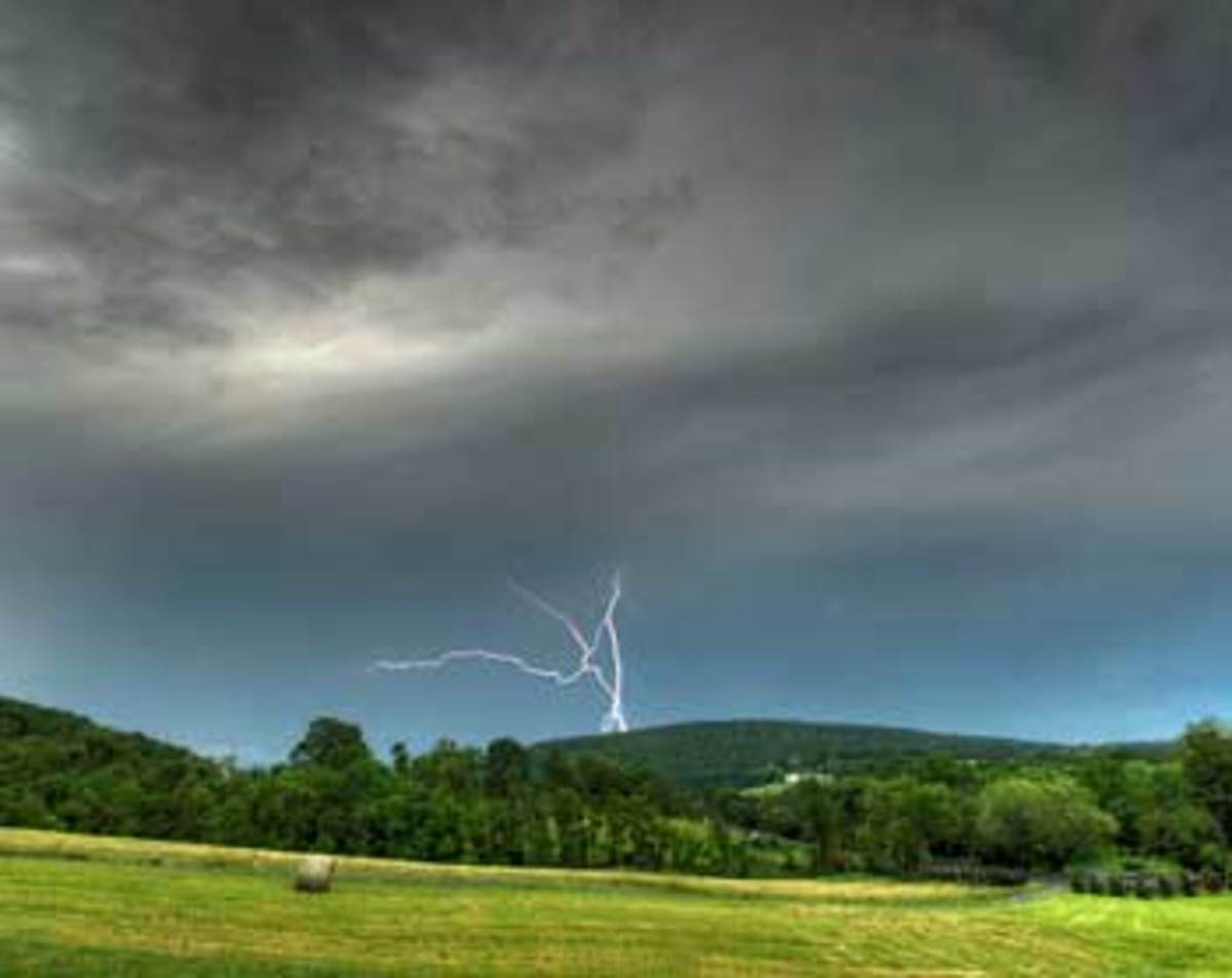 Protect your trees from damaging lightening strikes