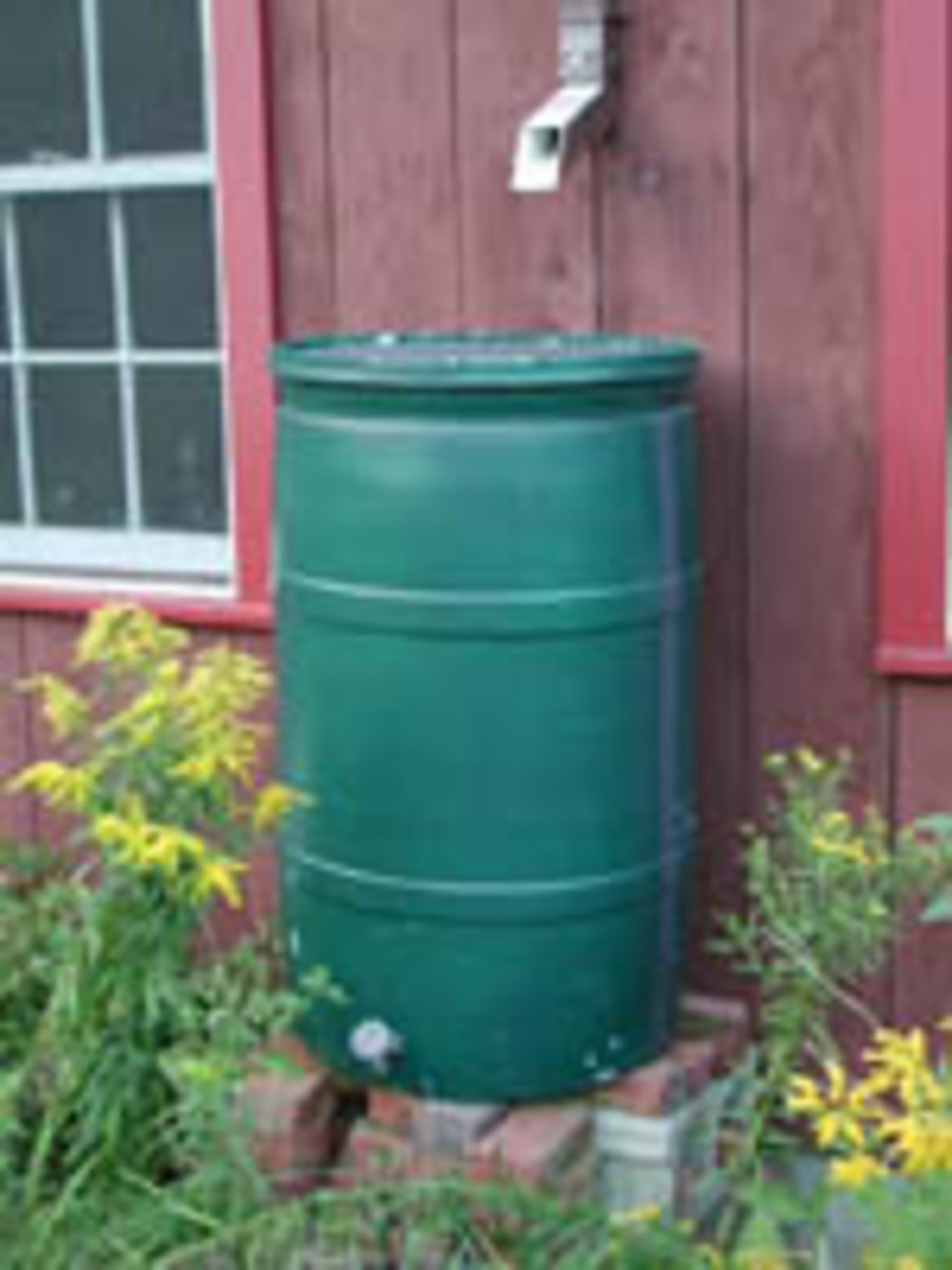 The rainbarrel stores the water for you to use on your lawn and ornamental plants.