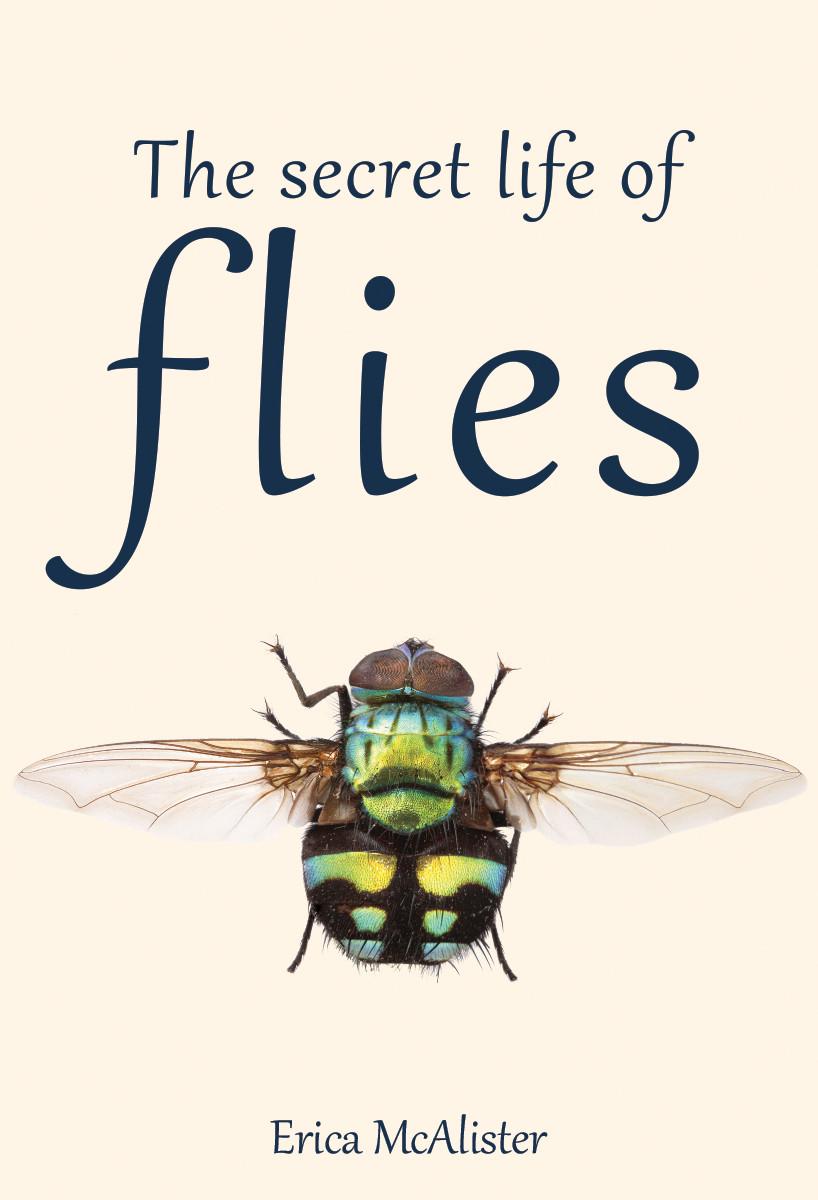 benefits of flies