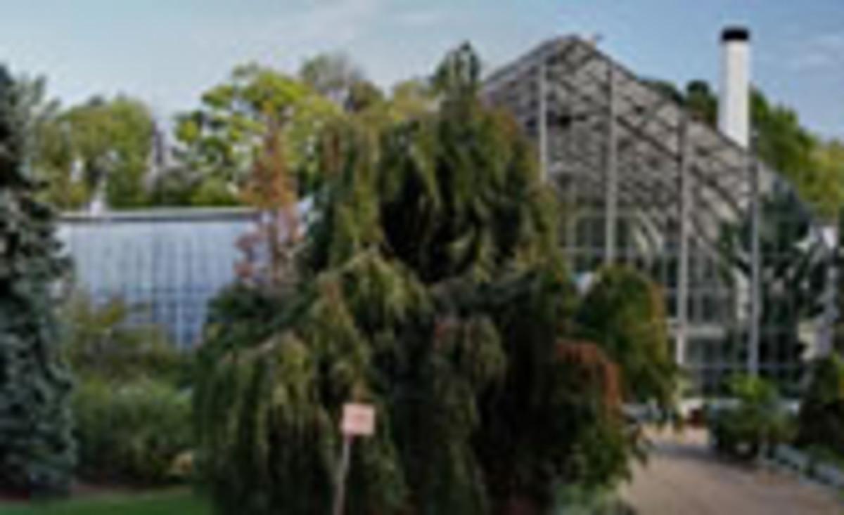 Krohn Conservatory, Cincinnati