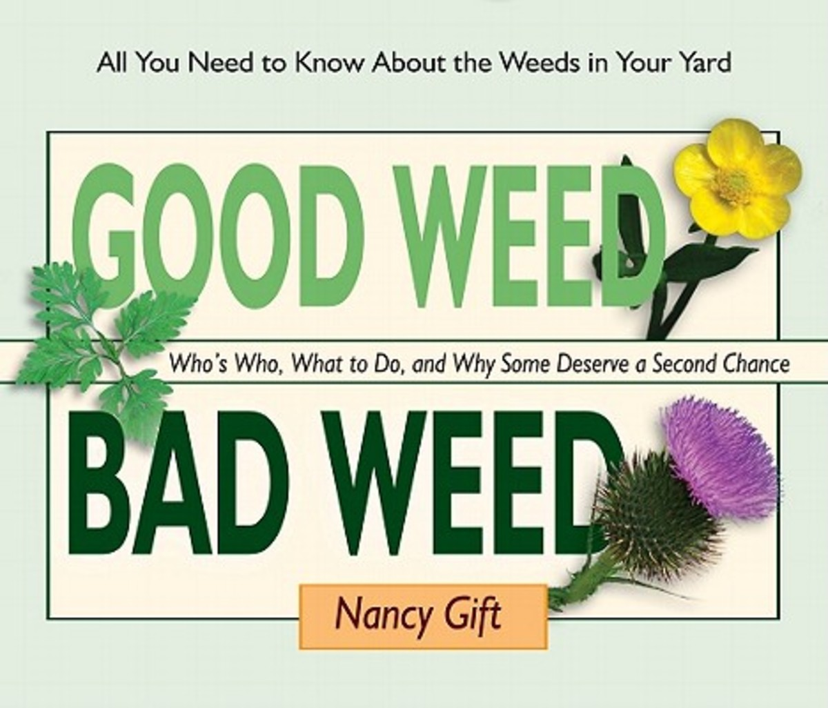 Good-Weed-Bad-Weed-Gift-Nancy