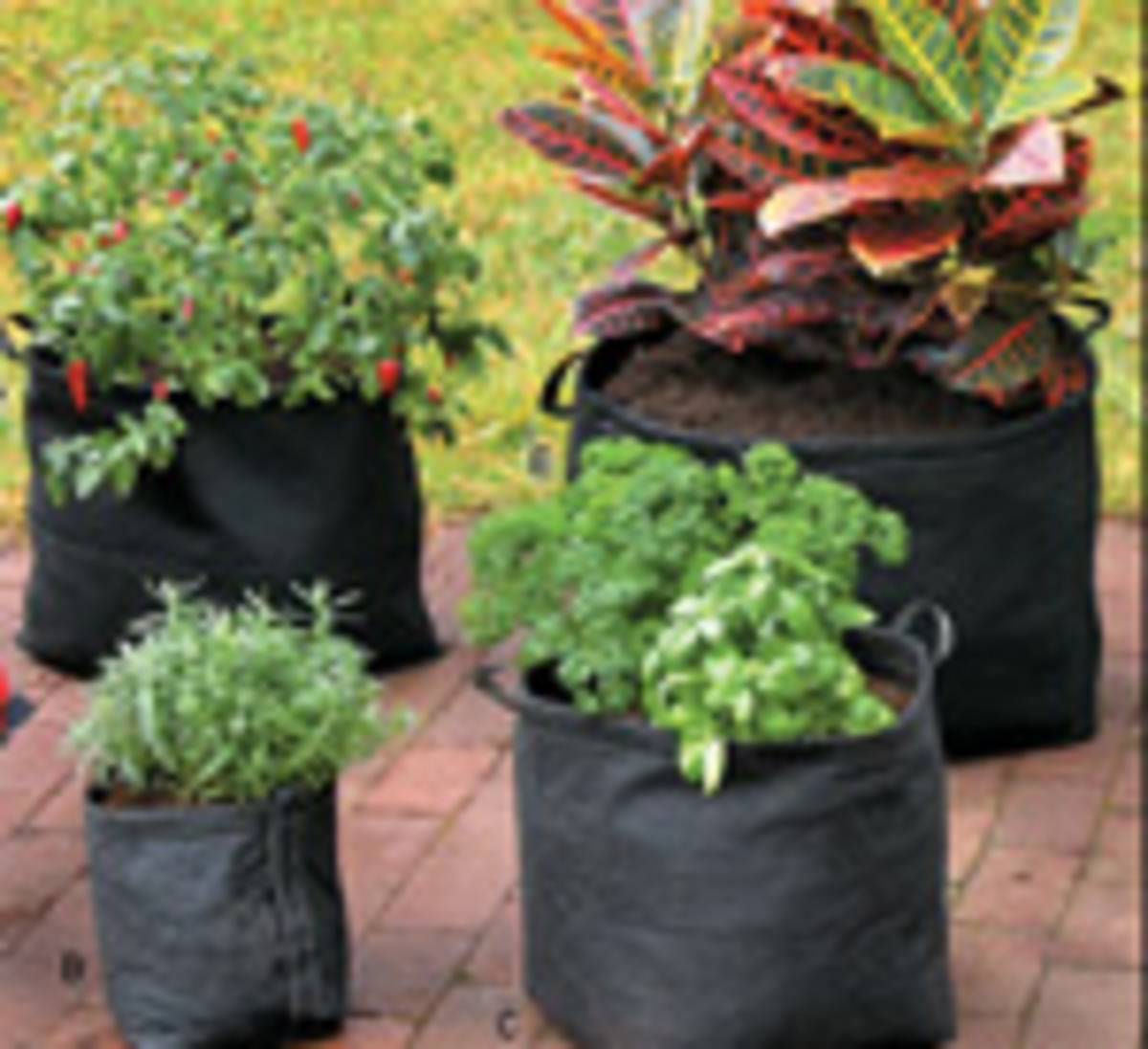 Grow Bags from Lee Valley Tools