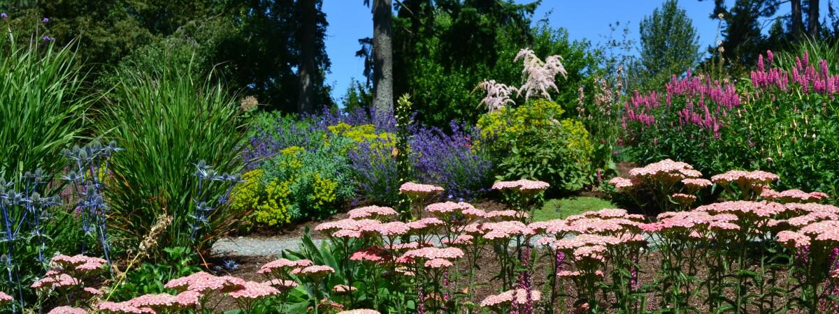 Bellevue Botanic Gardens