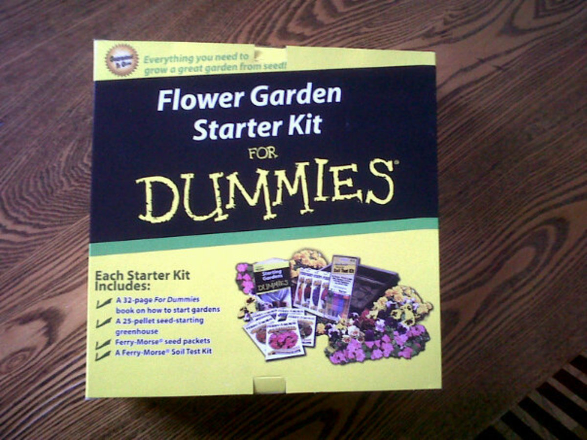 "My ""Gardening for Dummies"" kit, I'm determined to make a successful flower garden during my summer project!"