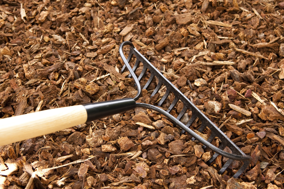Rake Mulch Fall Garden Tips