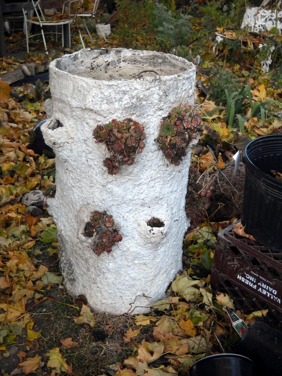 Cement Birch Stump Planter