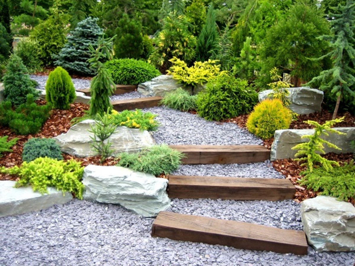 How To Think And Grow Like A Landscape Designer Horticulture