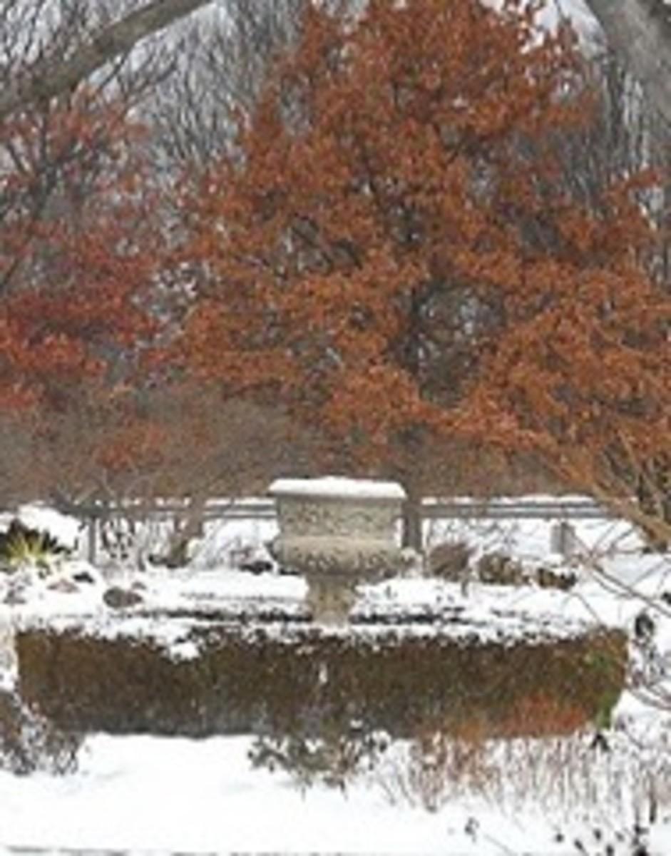 Jenny Koester fountain winter