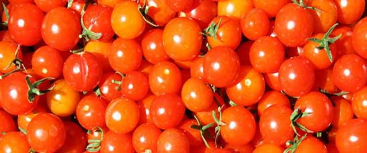 Super Sweet 100 Cherry Tomato