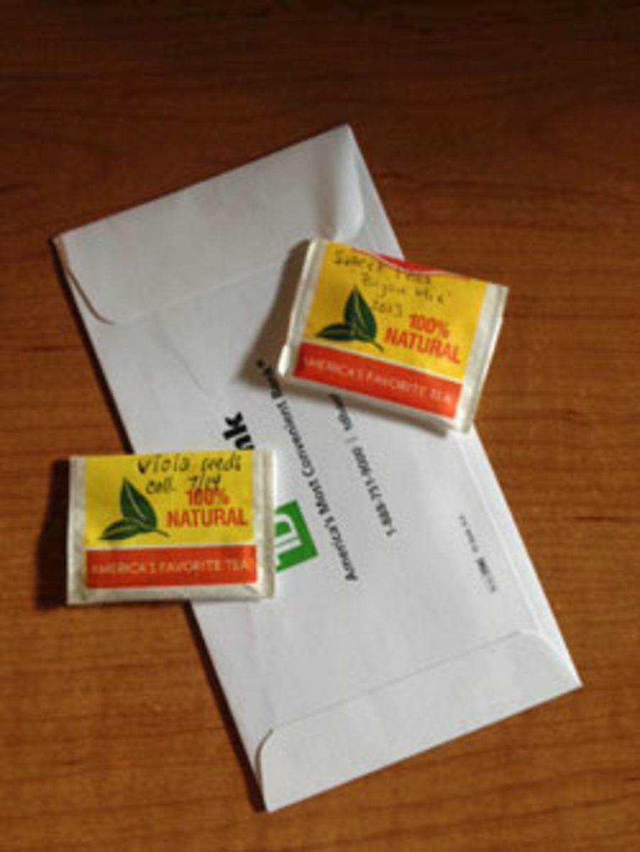 envelopes for saving seed