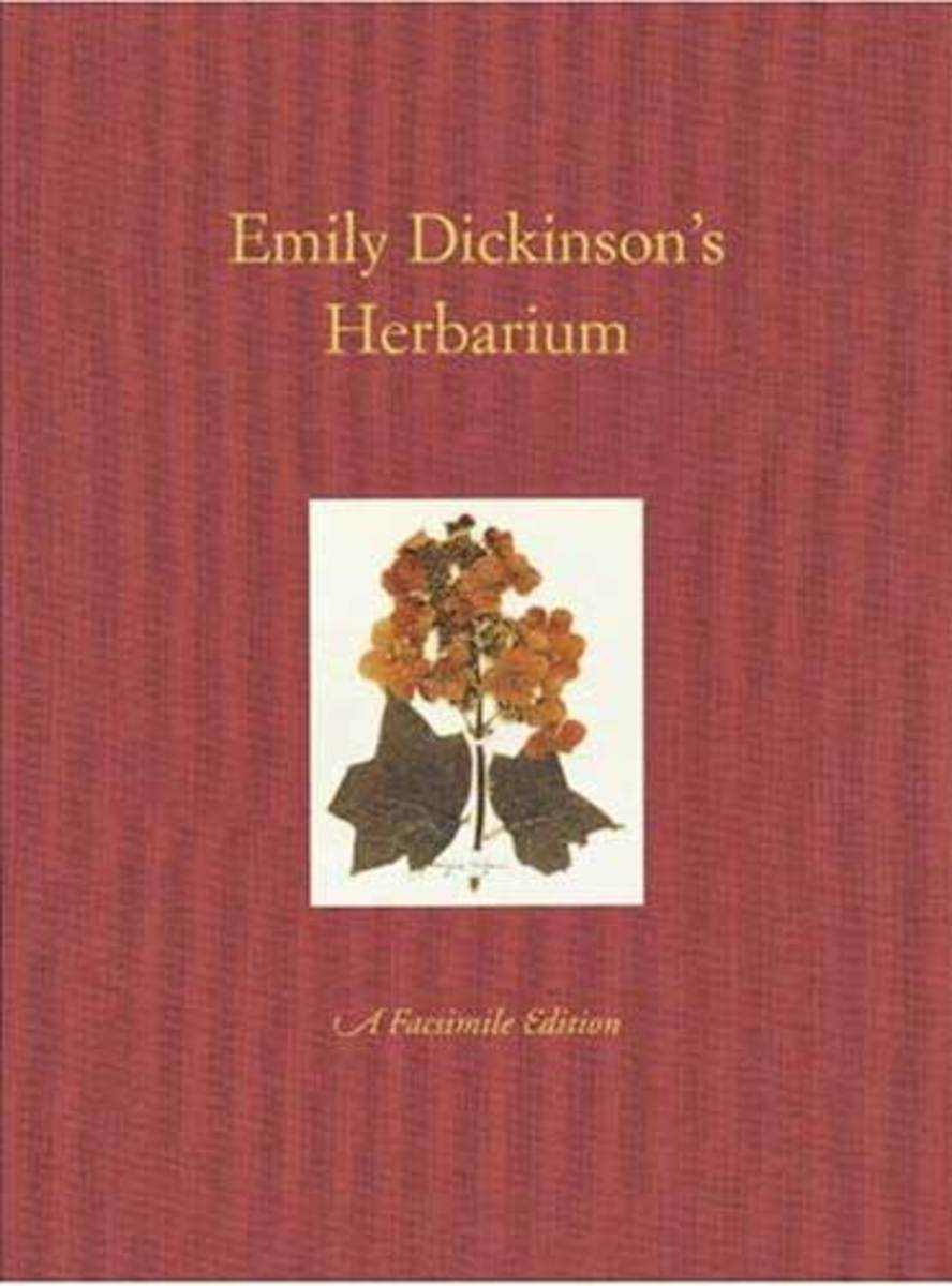 the life and influence on poetry of emily dickinson American writers' whose influence—especially in terms  life of emily dickinson  but in ruth miller's the poetry of emily dickinson.