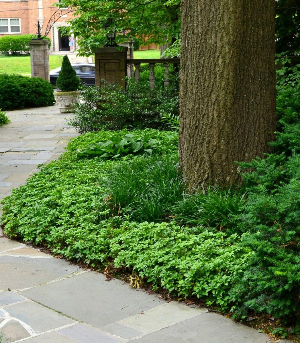 garden design tips