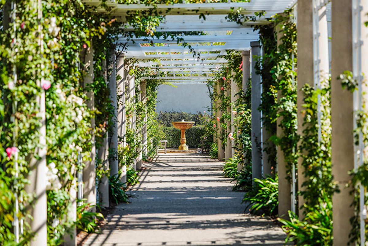 A pergola has more than four supports, plus a flat roof that's often made of slats to allow shafts of light to come through. It may cover a patio or seating area, or a long pathway such as this one.