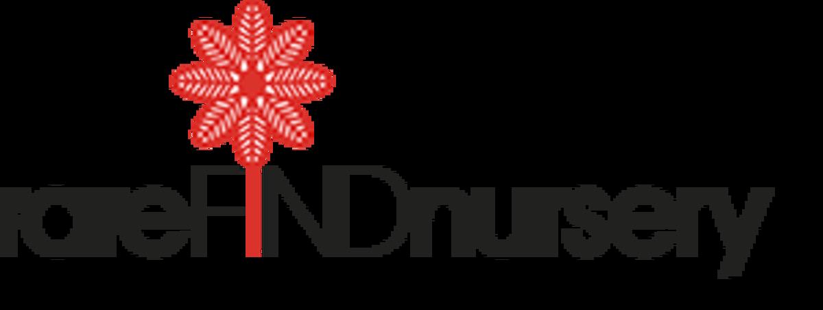 rarefind-logo-300x118