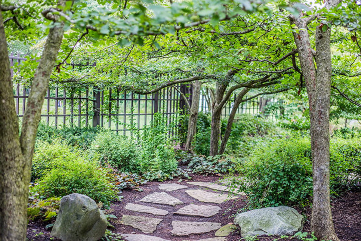 In this space, the structural elements are the stones, path, trees, shrubs and fence. These are details that remain visible year-round.