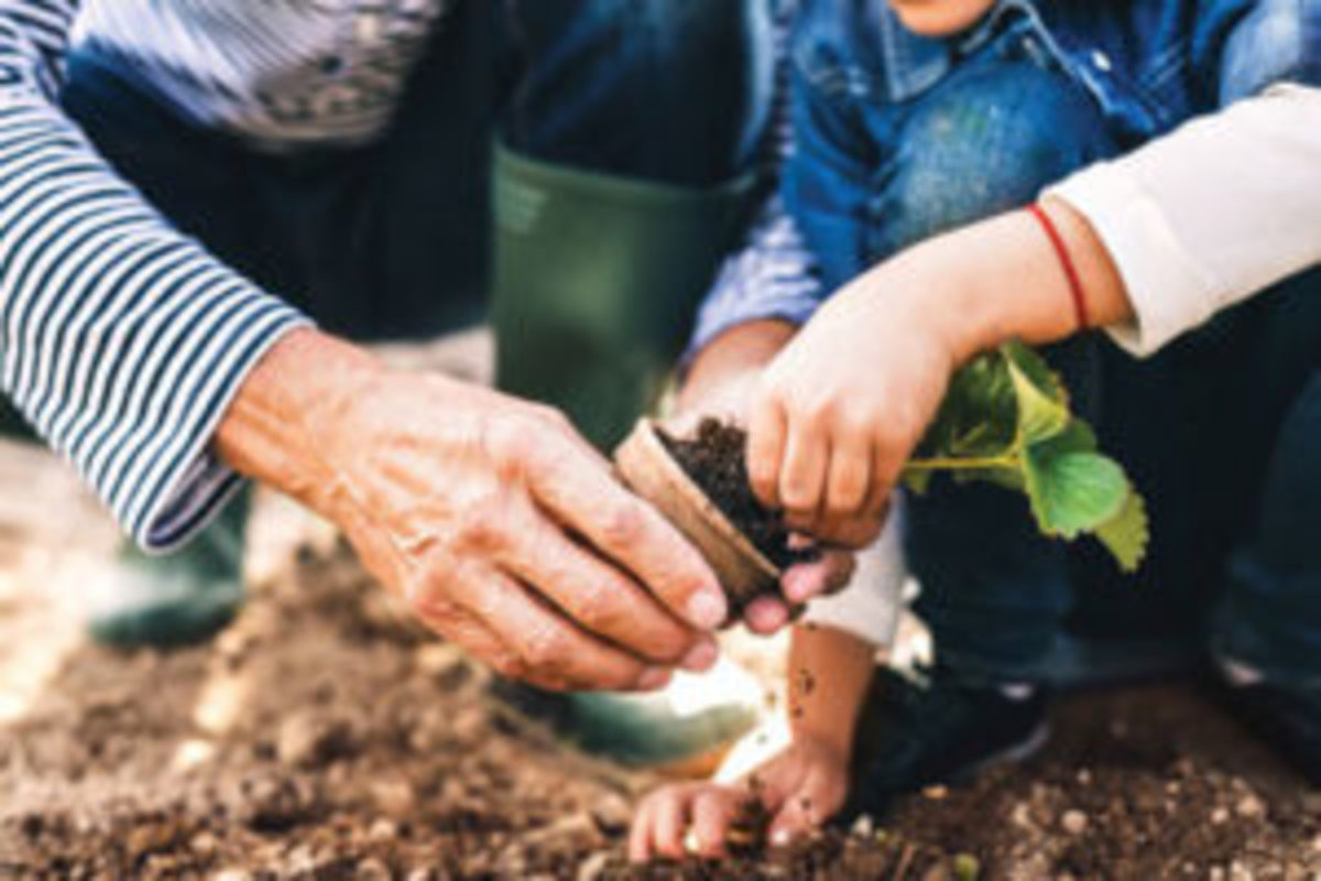 Winter is a good time to set gardening goals for the year. One might be to share time and knowledge in the garden with loved ones, or volunteer for garden-related community projects.