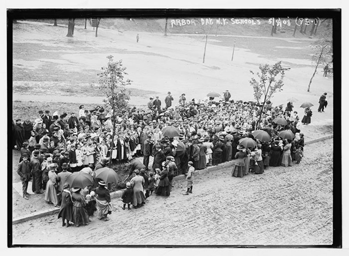 New York schoolchildren and families participate in a tree-planting ceremony to observe the state's Arbor Day on May 8, 1908.